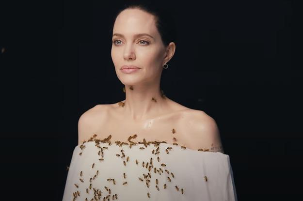 Những chú ong của Angelina Jolie bao trùm Ngày Ong Thế giới