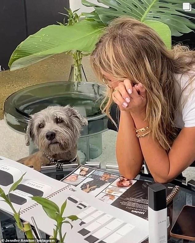 Giữ công ty của mình: Cô ấy đã chia sẻ thêm những bức ảnh hậu trường bao gồm một trong số những bức ảnh cô ấy đang ngồi và suy nghĩ về LolaVie mới của mình với người bạn bốn chân Clyde